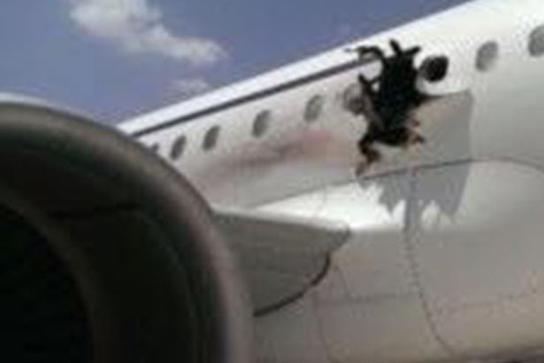 A-view-of-an-airliner-after-an-explosion-aboard-Daallo-Airlines-Airbus-flying-to-Djibouti